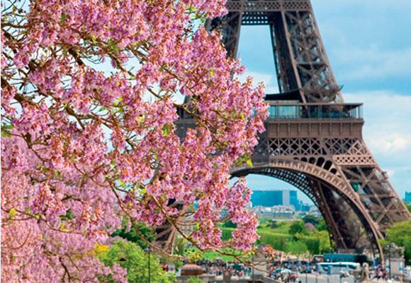 Paris_flor